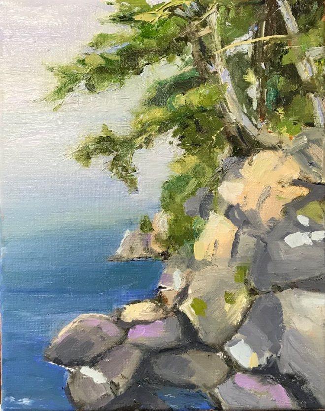 tree on cliff.jpg