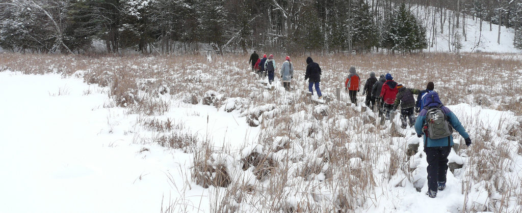 Kingston Youth Naturalists