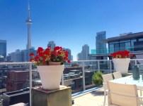 terrace-view-1