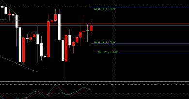 13 Hal Trading Forex untuk Pemula