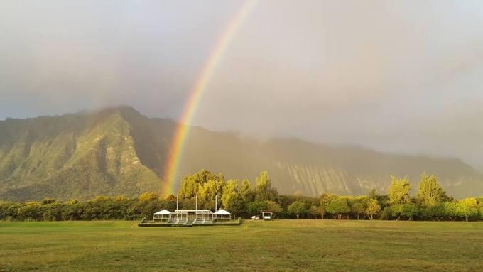Therapeutic Horsemanship of Hawaii(ホースペインティング)