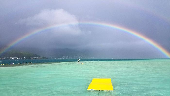 Kaneohe Sandbar(カネオヘ・サンドバー/天国の海)