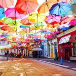 ハウステンボスで雨の日の遊び方は⁉︎おススメお土産ベスト3‼︎