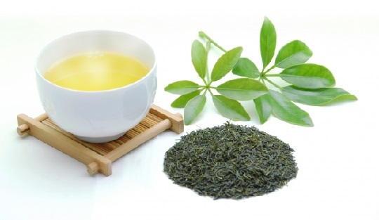 茶殻 脱臭剤 再利用