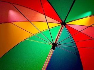 おしゃれでかわいいビニール傘
