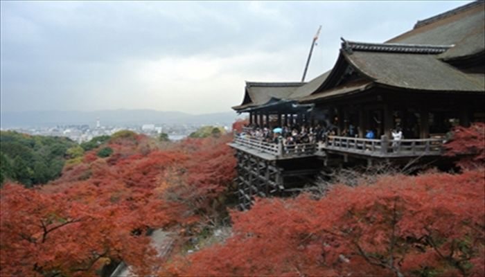 秋にしたいこと 京都へ遊びに行く