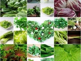 グリーンスムージー 葉野菜 保存方法