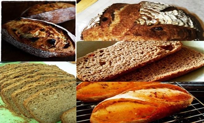 ひまわりの種 パンの人気レシピ
