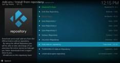 Install from Kodi Add-on Repository