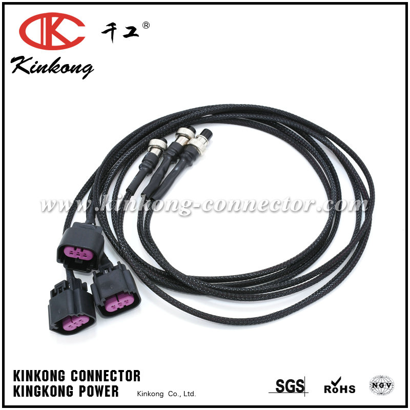 Electrical wire harness/Electronic equipment Kinkong