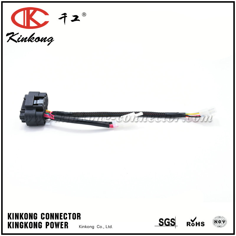 Kinkong Electrical Automotive Wire Harness Hyundai Accent Loom