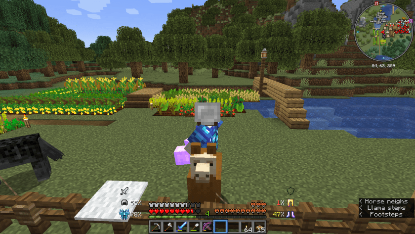 Me sitting on the back of the llama at home, in order to tame it.