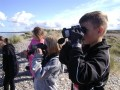 P5 looking for dolphins in Moray Firth
