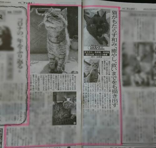 日刊ゲンダイ20201224