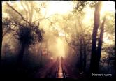 Walking alongside the railway tracks at the Matheran Hillstation.  The Journey.. The Hope.. Life <3