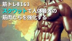 筋トレBIG3スクワットで人体最大の筋肉たちを強化する