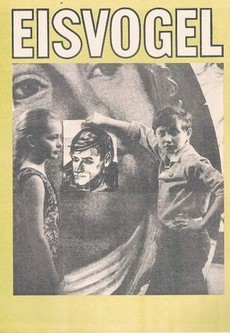 Зимородок фильм 1972