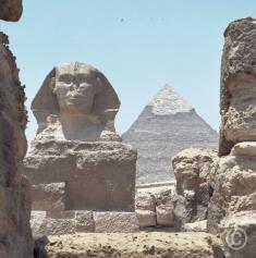 Trois oiseaux Cheffren, Cairo