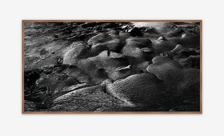 Framed Print: Dear pollution – Nature culture – Matters- v1 - Limited edition (1-80)