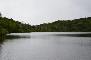 白駒池(5)