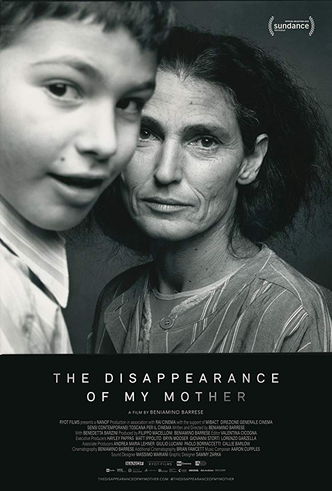 the poster for The Disappearance of My Mother