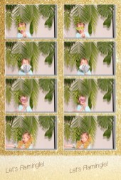 little girl in photo booth, photo booth print, 4 photos and logo from photo booth print, group with props in photo booth, gold background photo booth, palm leaf backdrop for photo booth, photo booth for wedding reception, bridal shower photo booth