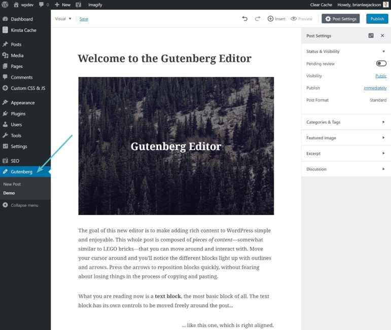 demo editor gutenberg