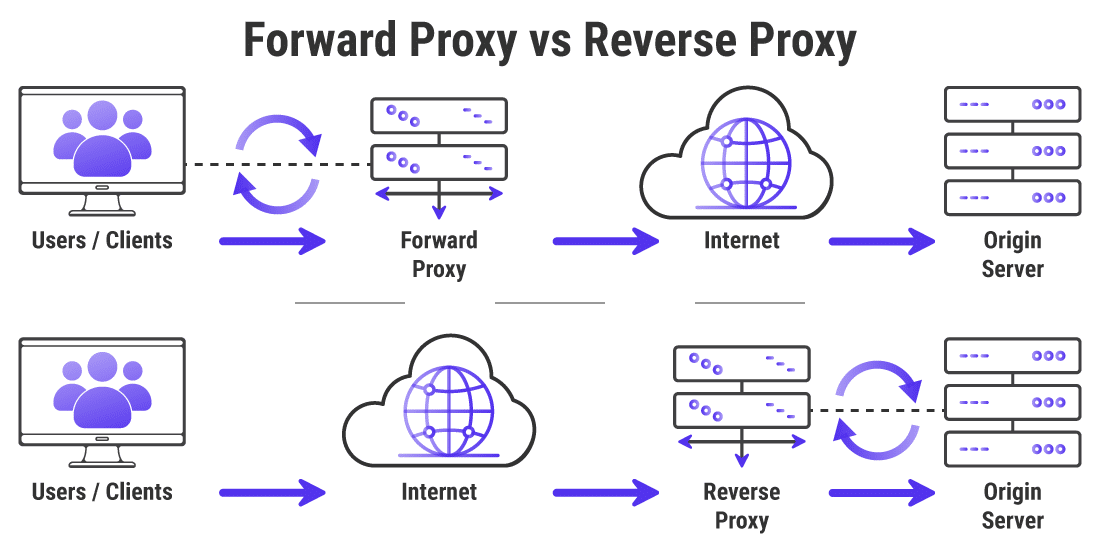 How to Set up a Reverse Proxy (Step-By-Steps for Nginx and Apache) - Seotomize