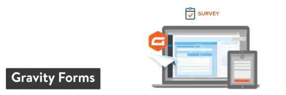 Gravity Forms WordPress plugin - WordPress survey plugins