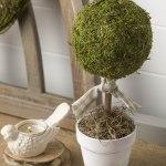 Diy Topiary Balls Moss Balls Moss Balls