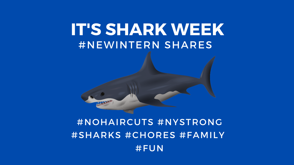#NEWINTERN DECLARES IT SHARKWEEK AT KIRATED COMMUNICATIONS