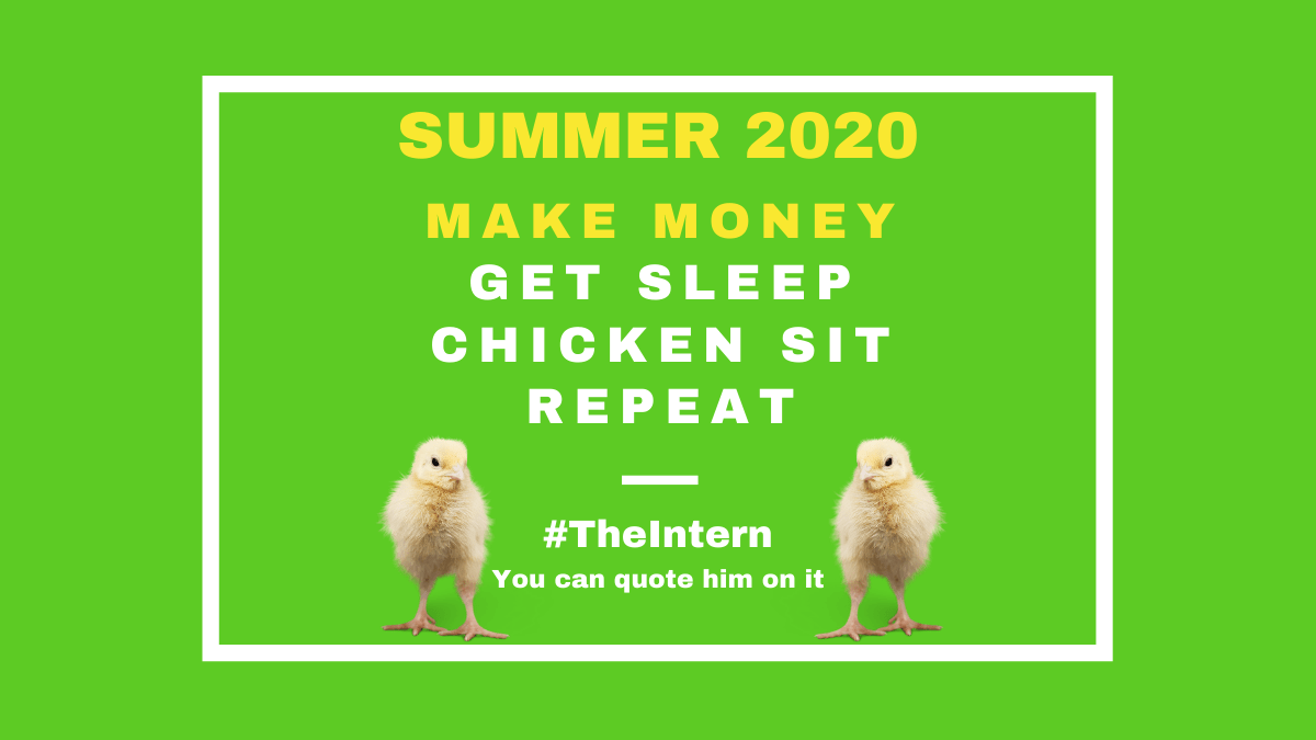 It's time to make some money...Experienced Chicken sitter #theintern skips naps to make money Summer 2020 At KIRated Communications our mantra is #MIH Make it Happen. At Kirated we offer unique, bespoke, and creative ideas to get business growth on track.