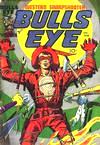 13 Bullseye cover