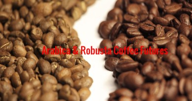Robusta and arabica coffee hit multi-year lows