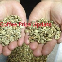 Coffee Prices (Madikeri) on 17-01-2019