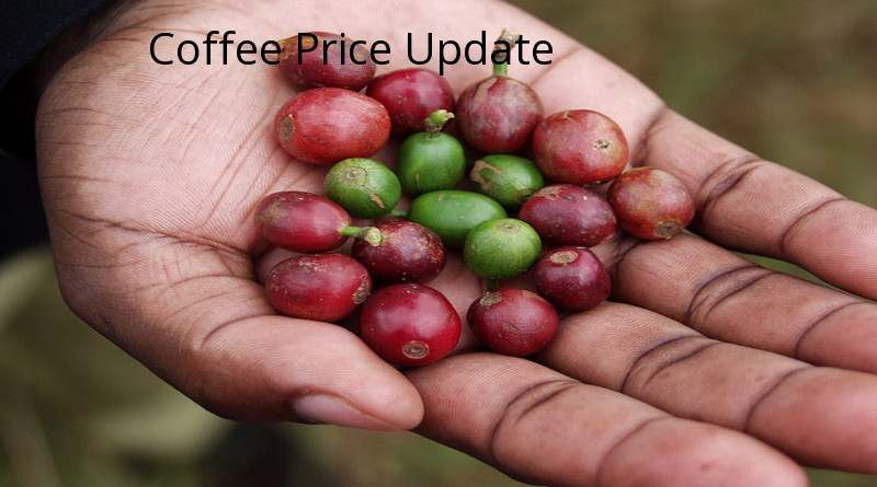 Coffee Prices (Karnataka) on 11-11-2019
