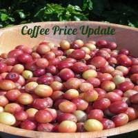 Coffee Prices (Karnataka) on 12-12-2019
