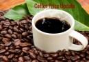Coffee Prices (Karnataka) on 13-12-2019