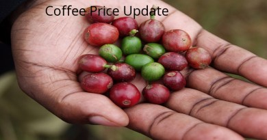Coffee Prices (Karnataka) on 22-03-2019