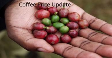 Coffee Prices (Karnataka) on 22-03-2019