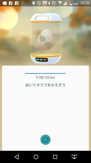 shiawase-tamago2