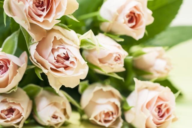 バラ花束2