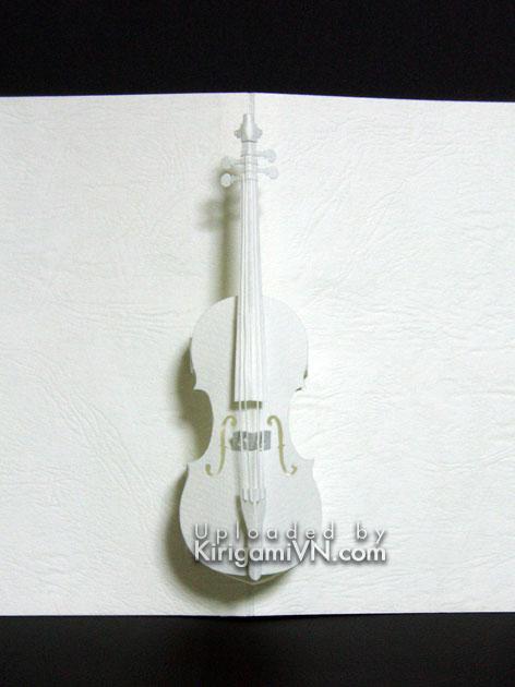Đàn Violin pattern - Hiroko