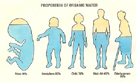 赤ちゃんの水分