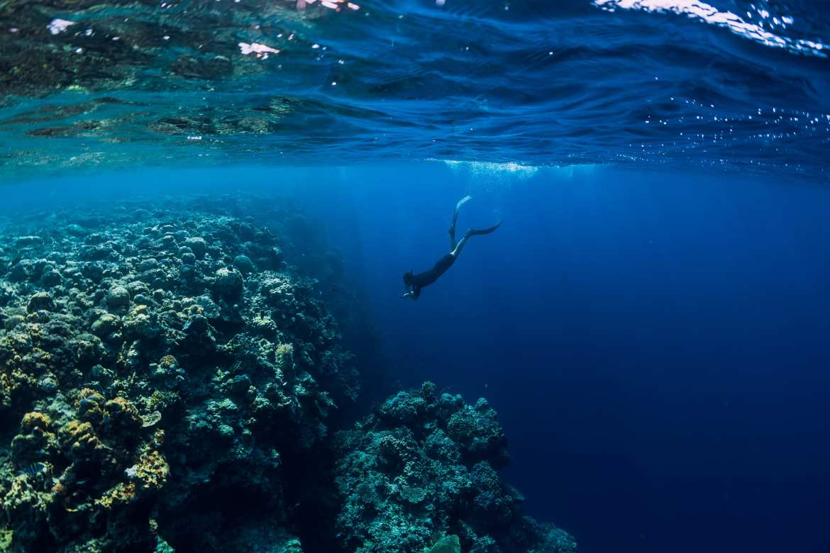 diver in the ocean next to a rock outcropping