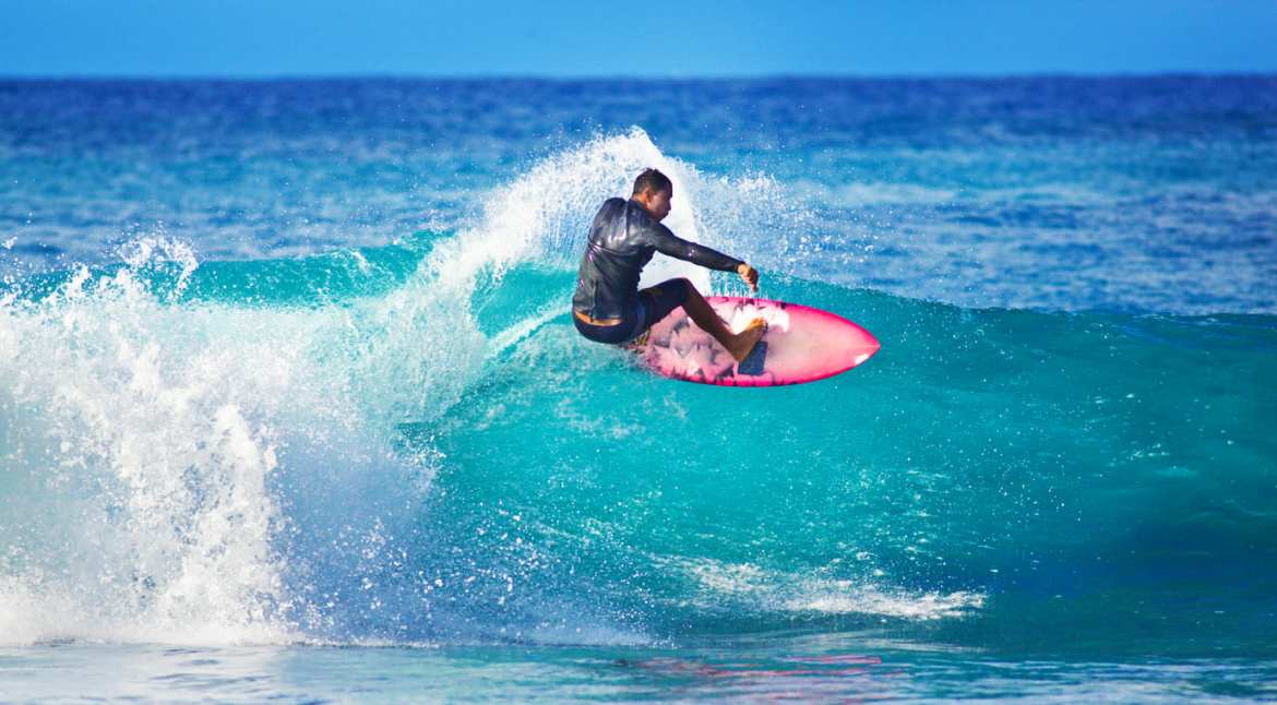 successful surfer as a stand-in for VCs who can handle several board seats at once