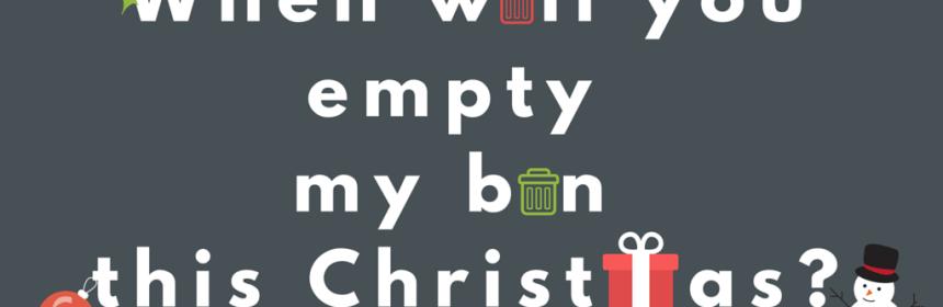 Christmas bin