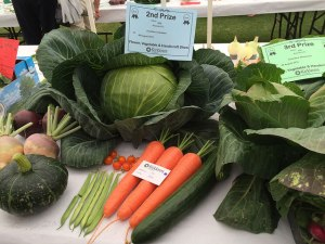 Vegetables at Summer Show