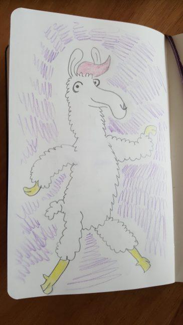 Nicole's llama drawing