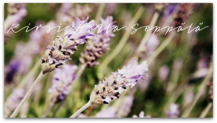 kirsihs blogi ©kirsihallaseppala